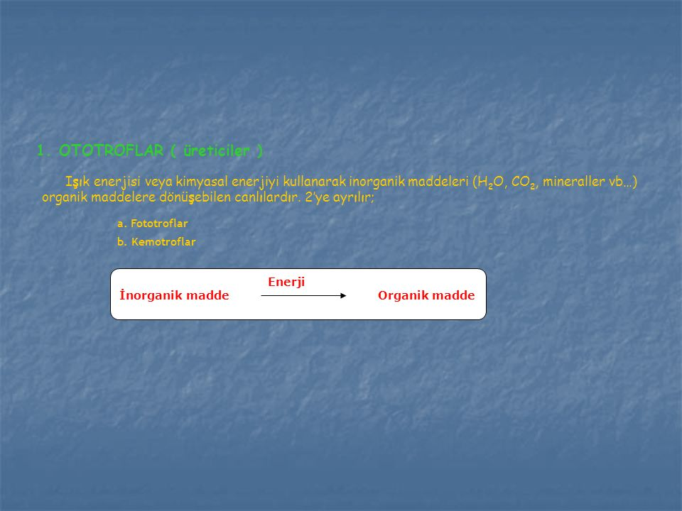 1. OTOTROFLAR ( üreticiler )