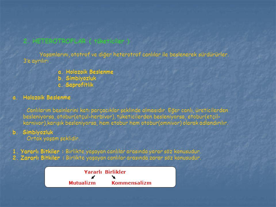 2. HETEROTROFLAR ( tüketiciler )