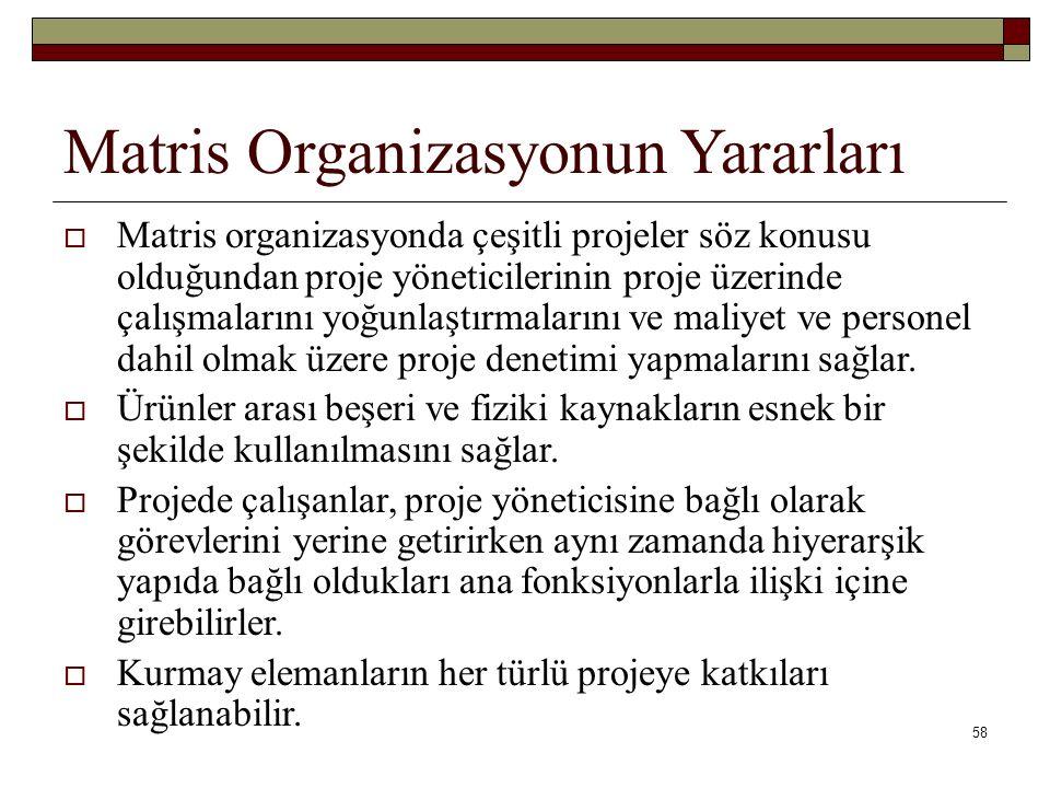 Matris Organizasyonun Yararları