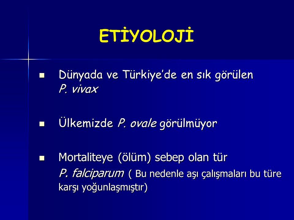 ETİYOLOJİ Dünyada ve Türkiye'de en sık görülen P. vivax