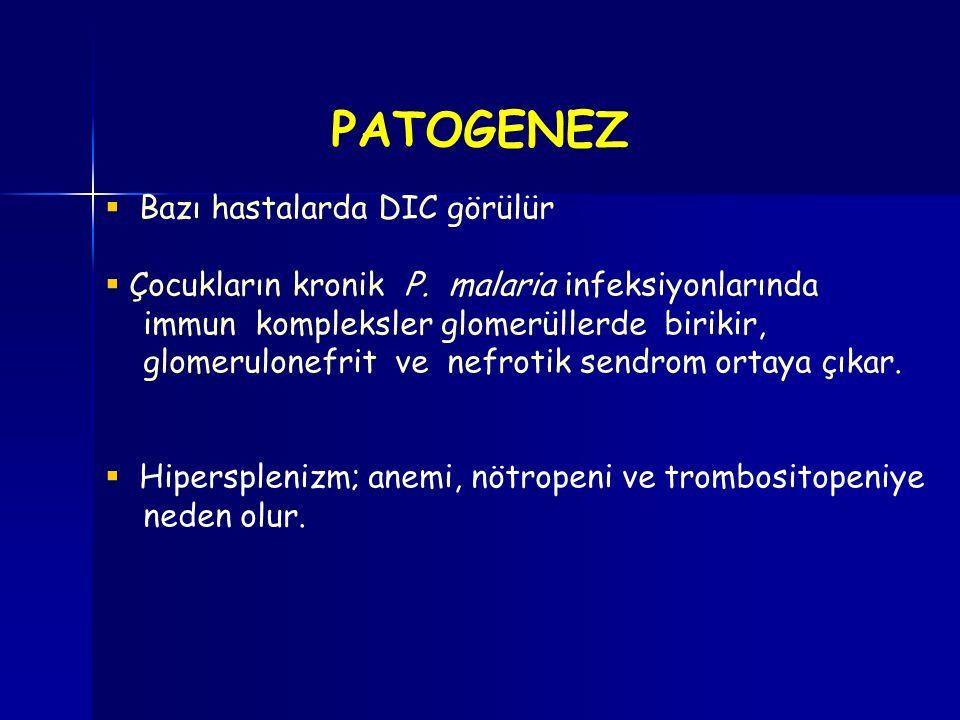 PATOGENEZ Bazı hastalarda DIC görülür