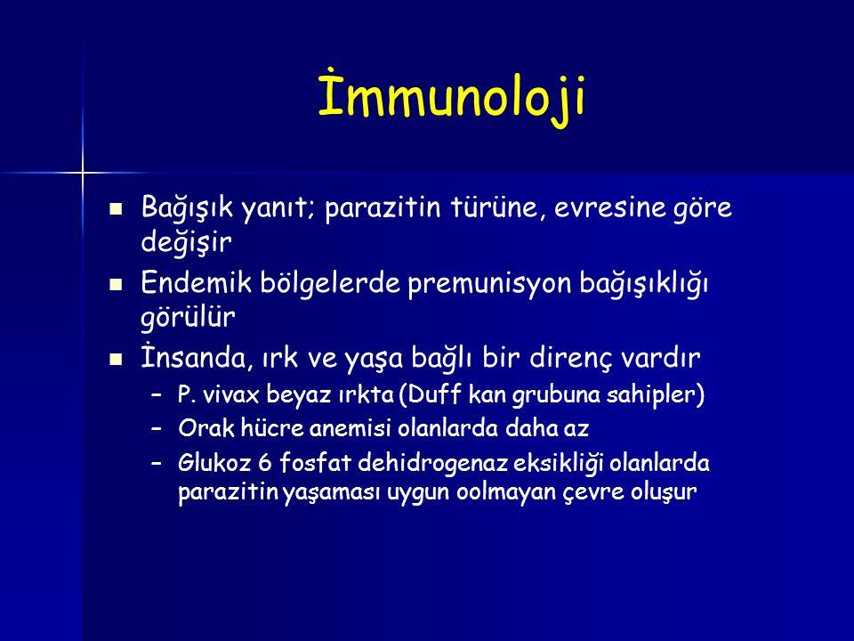 İmmunoloji Bağışık yanıt; parazitin türüne, evresine göre değişir