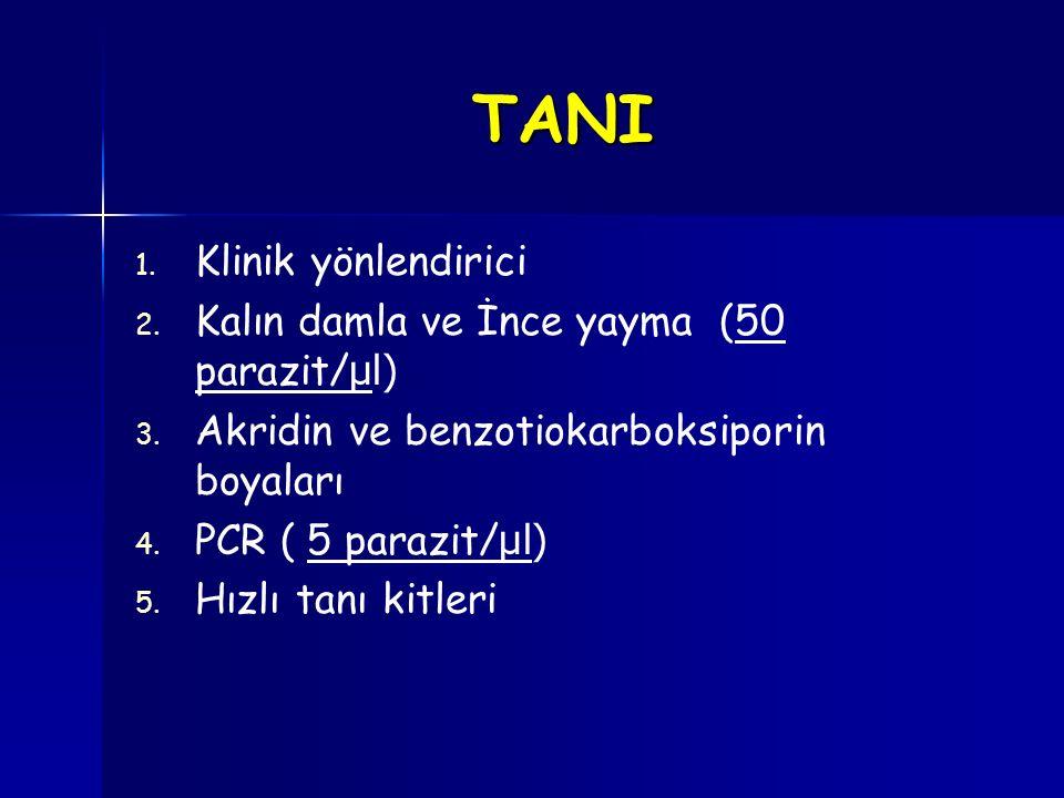 TANI Klinik yönlendirici Kalın damla ve İnce yayma (50 parazit/µl)