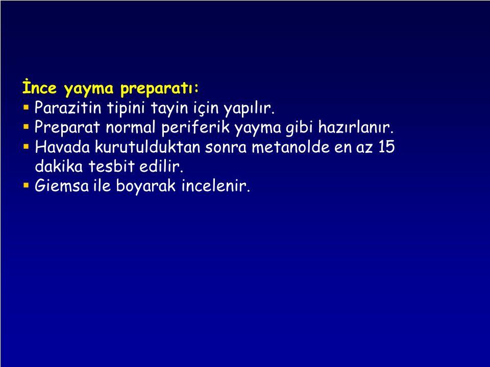 İnce yayma preparatı: Parazitin tipini tayin için yapılır. Preparat normal periferik yayma gibi hazırlanır.