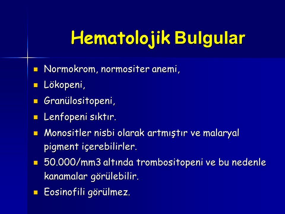 Hematolojik Bulgular Normokrom, normositer anemi, Lökopeni,