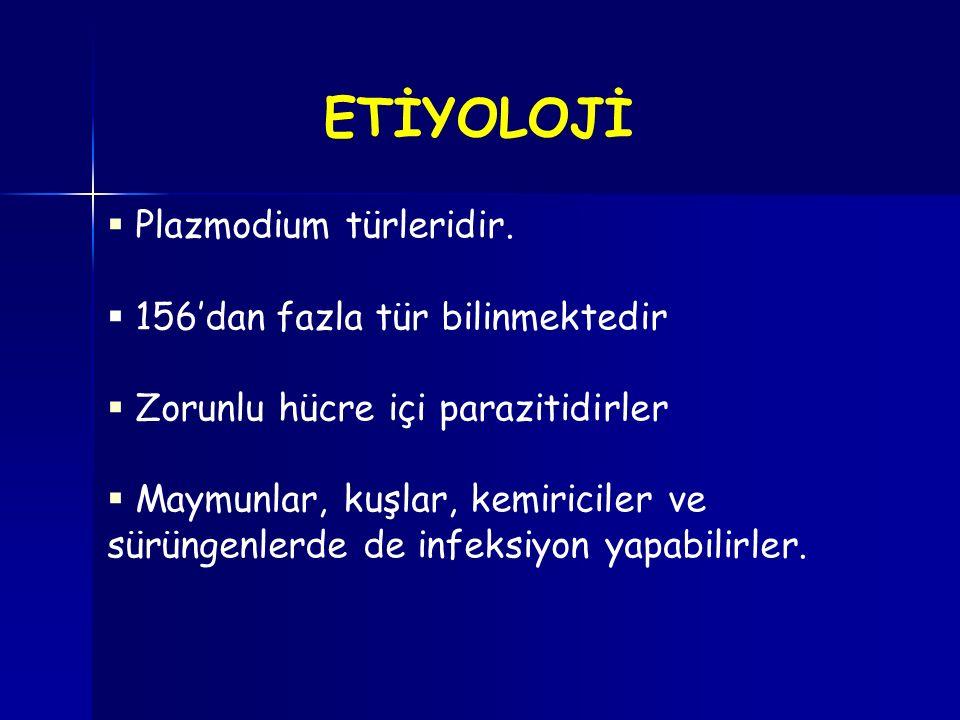 ETİYOLOJİ Plazmodium türleridir. 156'dan fazla tür bilinmektedir