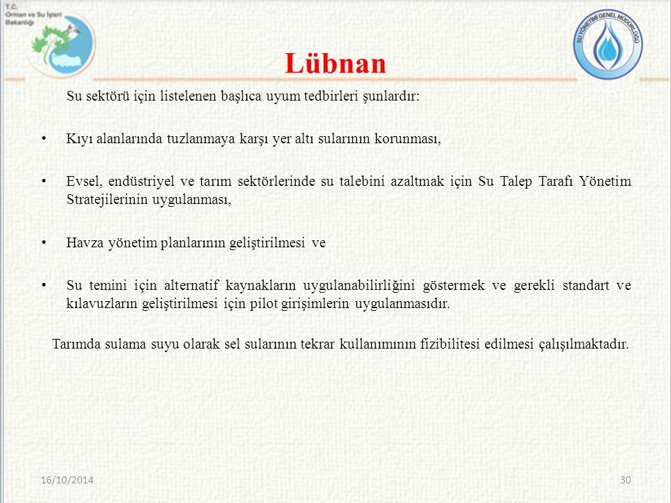 Lübnan Su sektörü için listelenen başlıca uyum tedbirleri şunlardır: