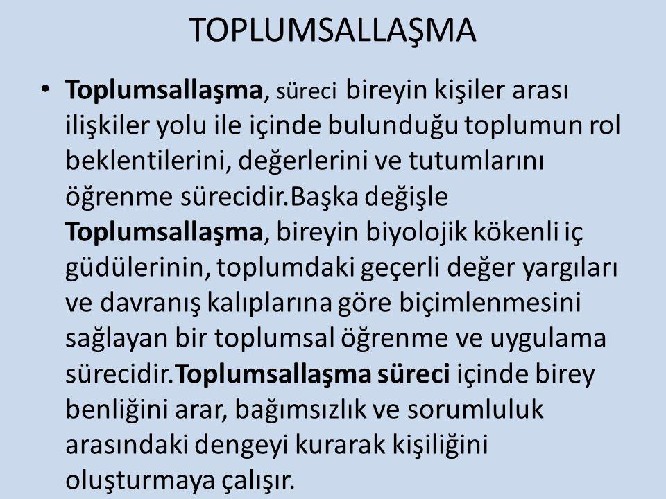 TOPLUMSALLAŞMA