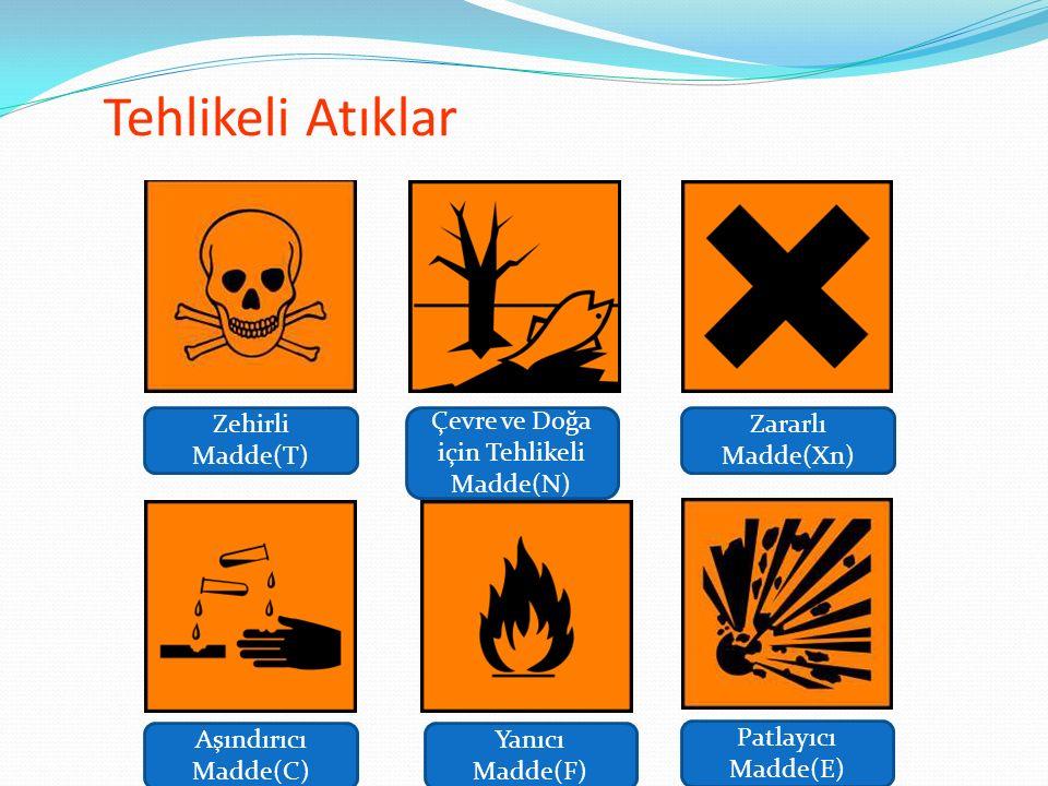 Çevre ve Doğa için Tehlikeli Madde(N)