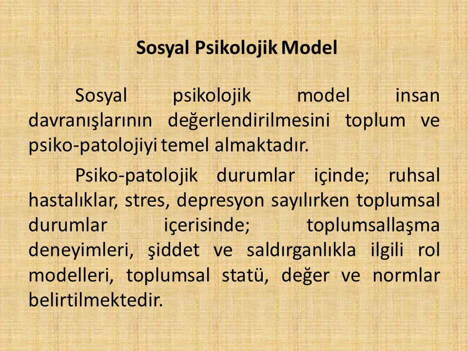 Sosyal Psikolojik Model