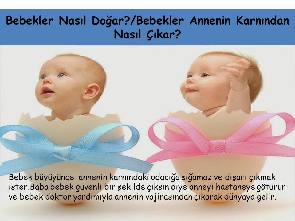 Bebekler Nasıl Doğar /Bebekler Annenin Karnından Nasıl Çıkar