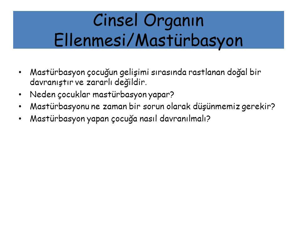 Cinsel Organın Ellenmesi/Mastürbasyon