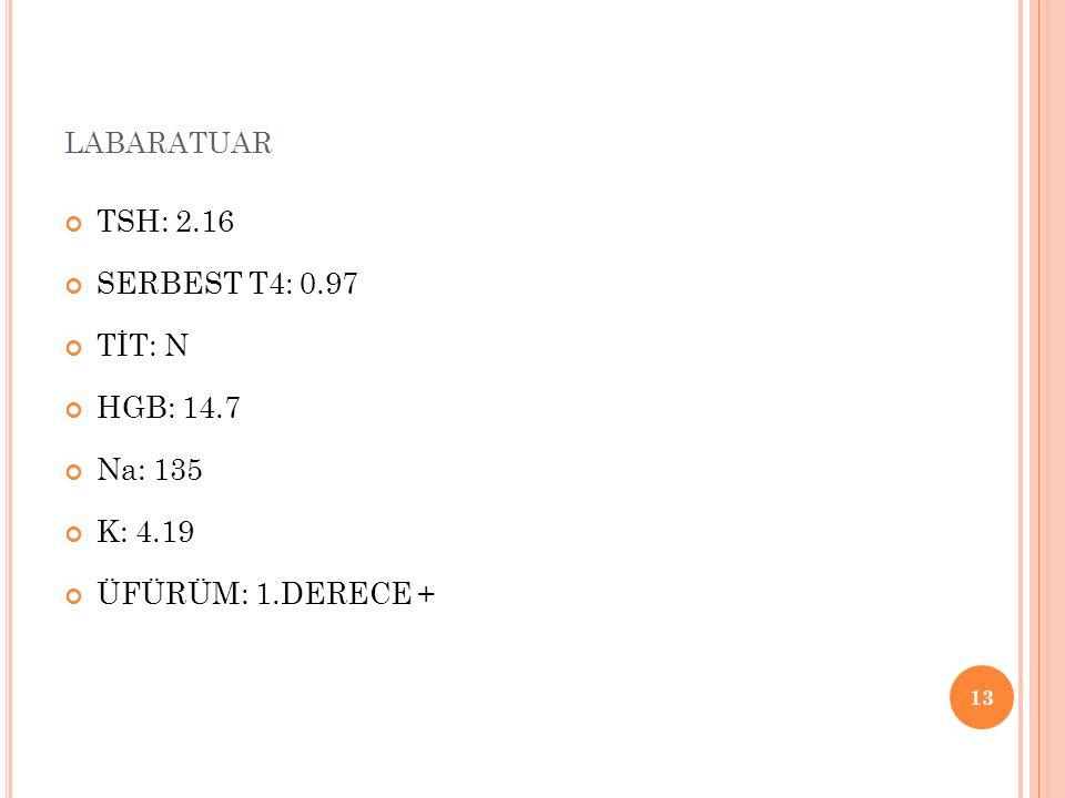 labaratuar TSH: 2.16 SERBEST T4: 0.97 TİT: N HGB: 14.7 Na: 135 K: 4.19