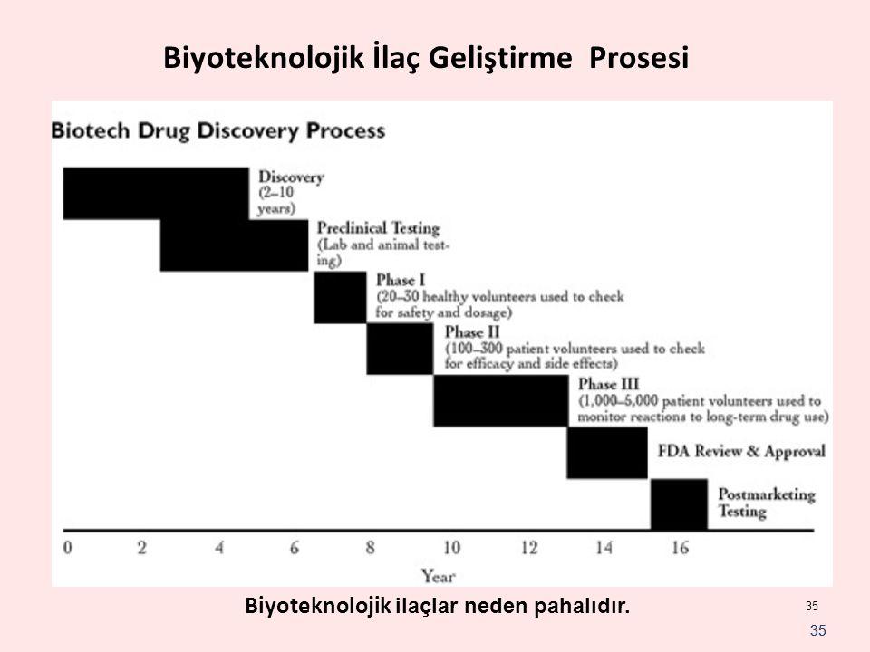 Biyoteknolojik İlaç Geliştirme Prosesi
