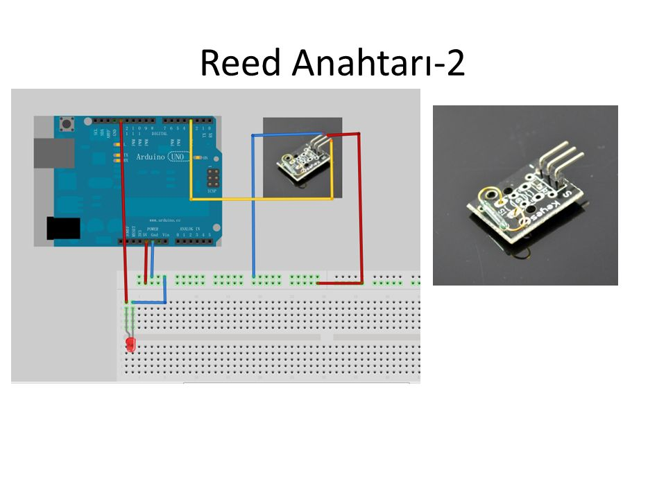 Reed Anahtarı-2