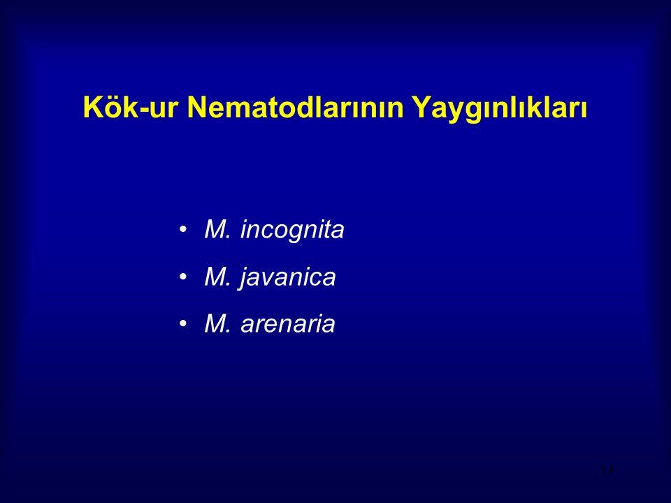 Kök-ur Nematodlarının Yaygınlıkları