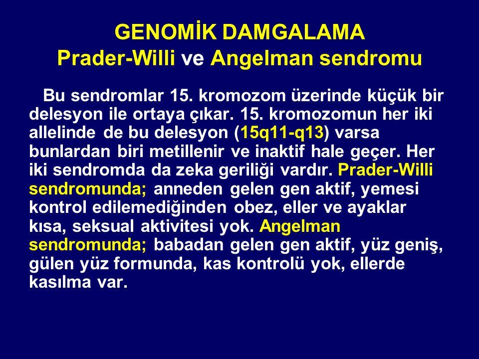 GENOMİK DAMGALAMA Prader-Willi ve Angelman sendromu
