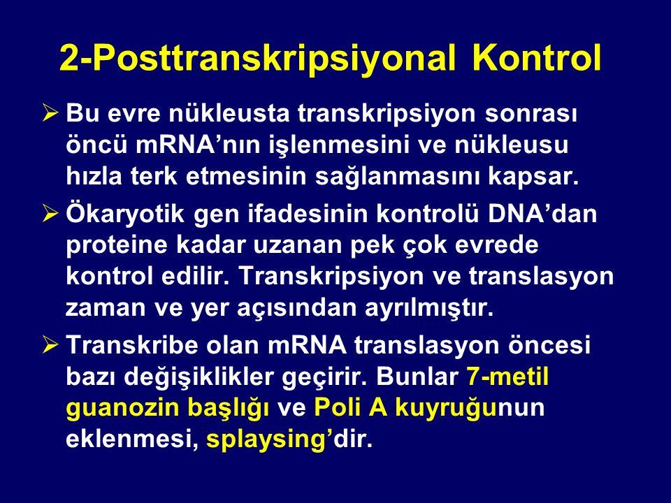 2-Posttranskripsiyonal Kontrol