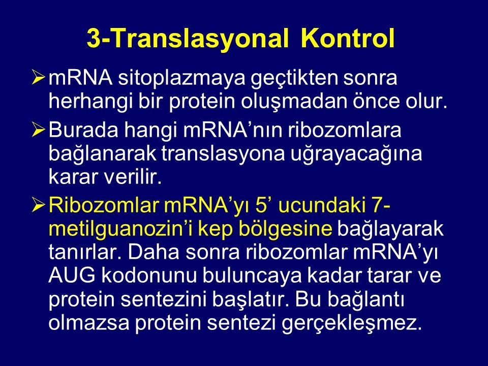 3-Translasyonal Kontrol