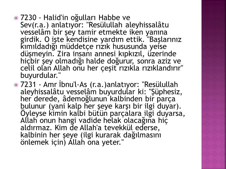 7230 - Halid in oğulları Habbe ve Sev(r. a