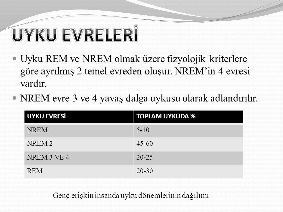 UYKU EVRELERİ Uyku REM ve NREM olmak üzere fizyolojik kriterlere göre ayrılmış 2 temel evreden oluşur. NREM'in 4 evresi vardır.