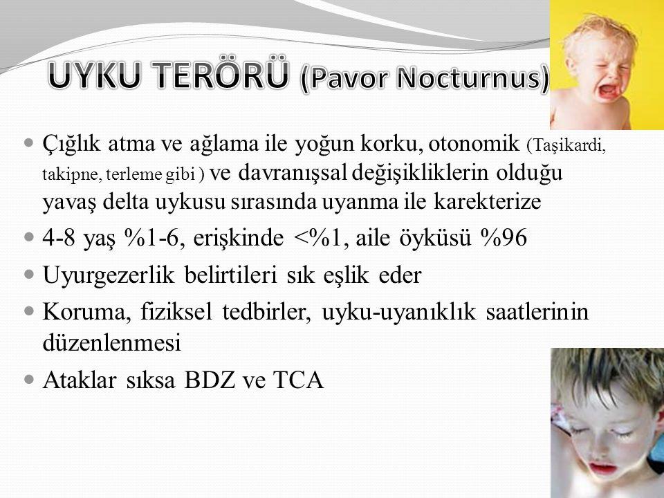 UYKU TERÖRÜ (Pavor Nocturnus)