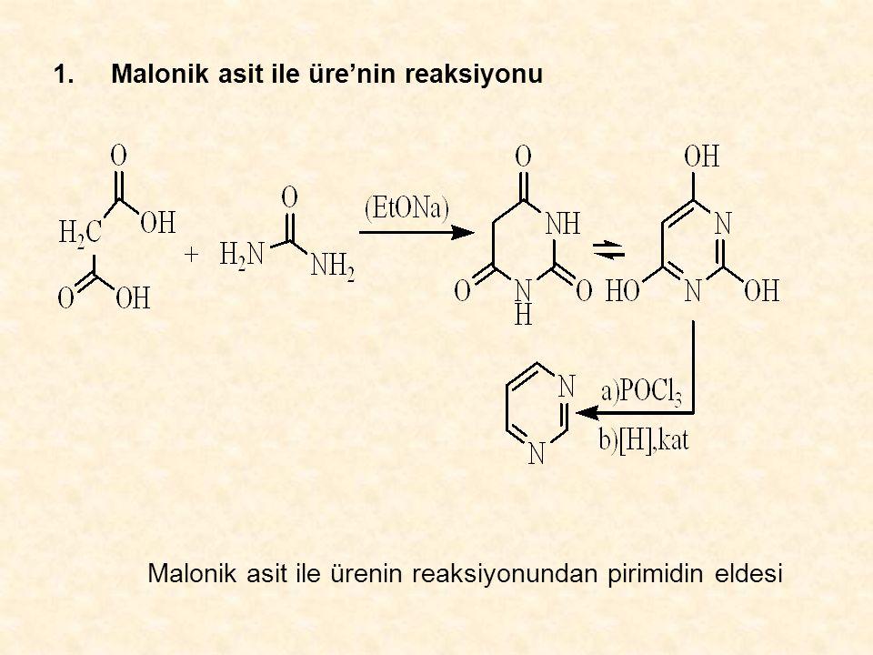 1. Malonik asit ile üre'nin reaksiyonu