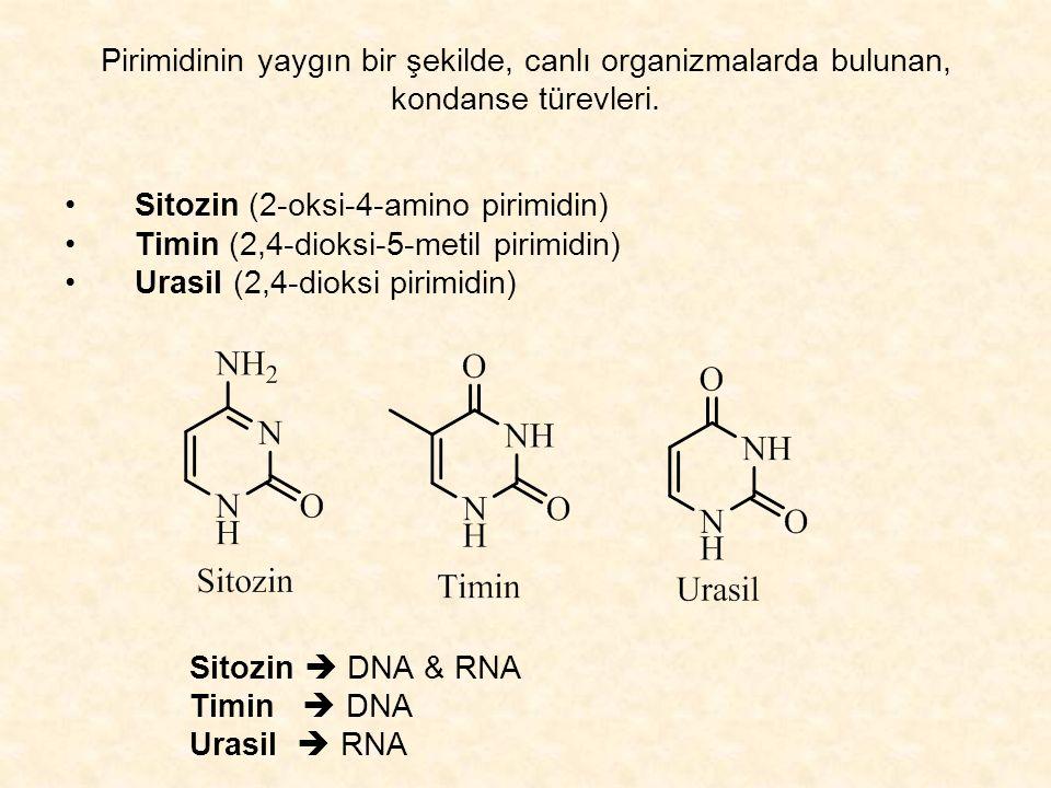 Pirimidinin yaygın bir şekilde, canlı organizmalarda bulunan, kondanse türevleri.
