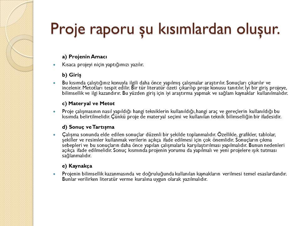 Proje raporu şu kısımlardan oluşur.