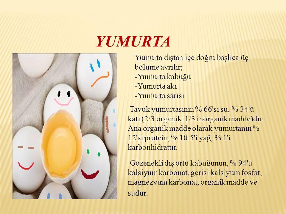 YUMURTA Yumurta dıştan içe doğru başlıca üç bölüme ayrılır;