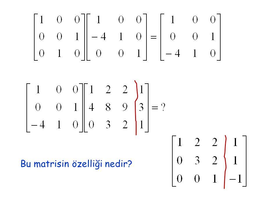 Bu matrisin özelliği nedir