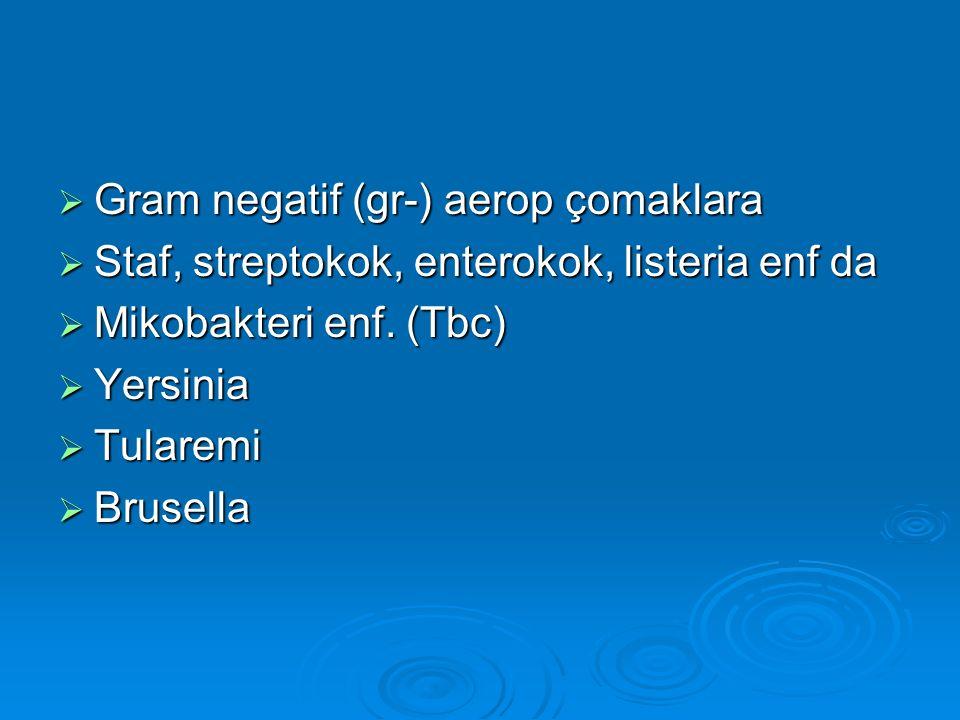 Gram negatif (gr-) aerop çomaklara