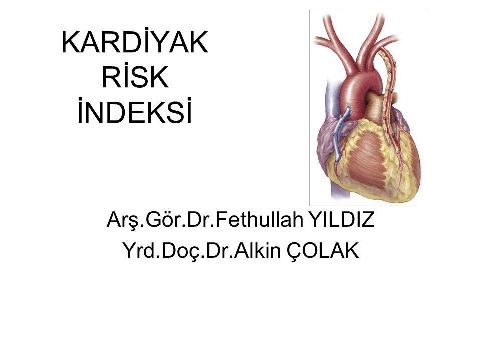 Arş.Gör.Dr.Fethullah YILDIZ Yrd.Doç.Dr.Alkin ÇOLAK