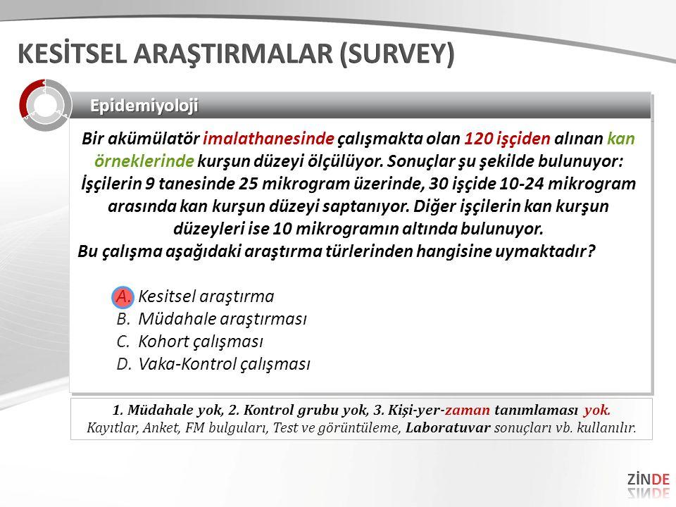 KESİTSEL ARAŞTIRMALAR (SURVEY)