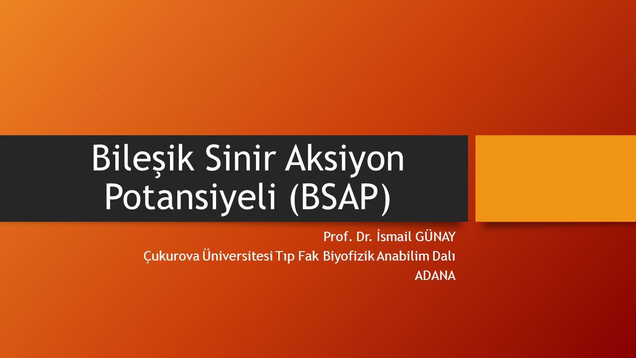 Bileşik Sinir Aksiyon Potansiyeli (BSAP)