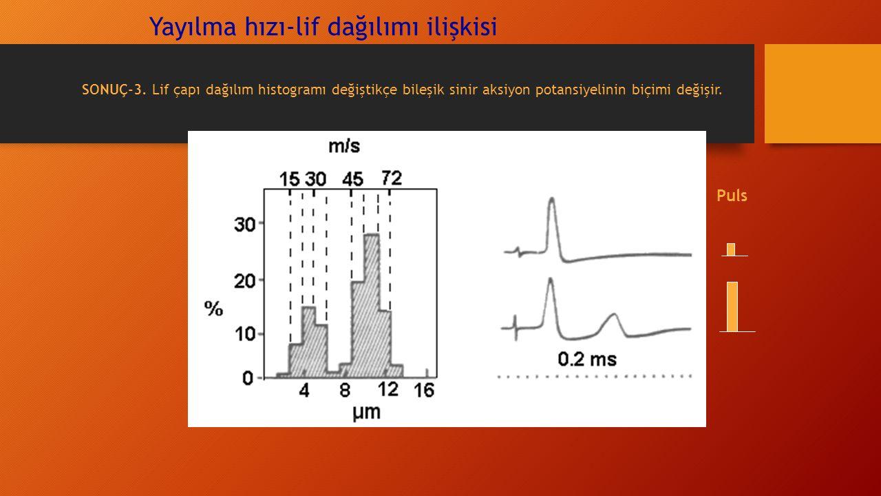 Yayılma hızı-lif dağılımı ilişkisi