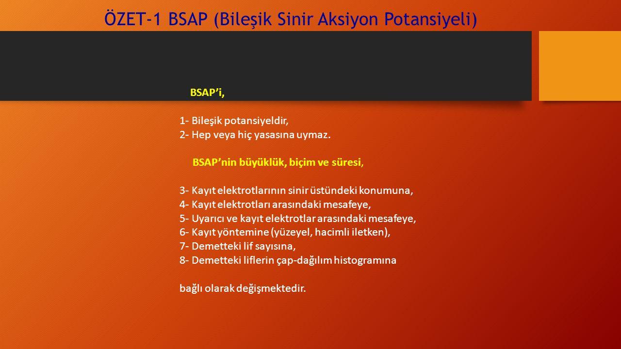 ÖZET-1 BSAP (Bileşik Sinir Aksiyon Potansiyeli)