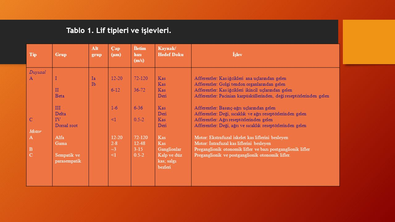 Tablo 1. Lif tipleri ve işlevleri.