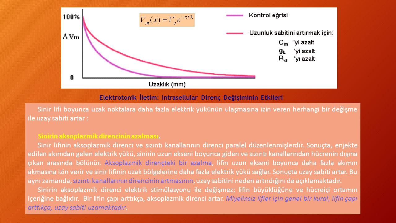 Sinirin aksoplazmik direncinin azalması.
