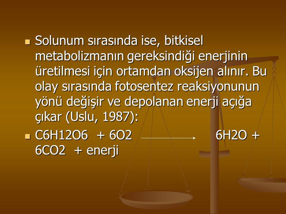 Solunum sırasında ise, bitkisel metabolizmanın gereksindiği enerjinin üretilmesi için ortamdan oksijen alınır. Bu olay sırasında fotosentez reaksiyonunun yönü değişir ve depolanan enerji açığa çıkar (Uslu, 1987):