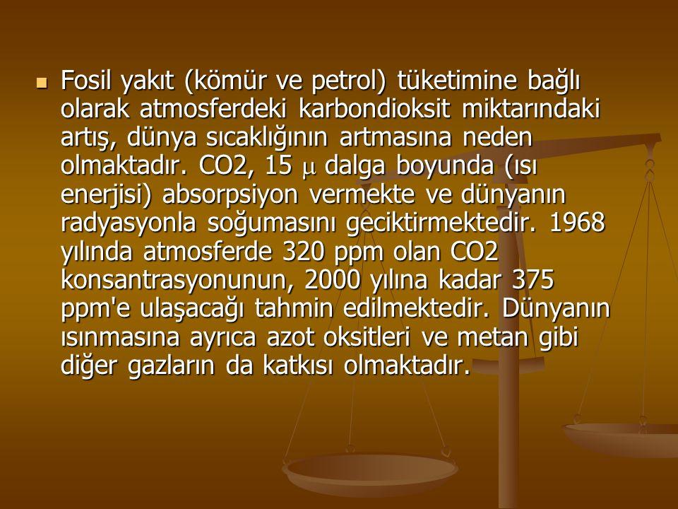 Fosil yakıt (kömür ve petrol) tüketimine bağlı olarak atmosferdeki karbondioksit miktarındaki artış, dünya sıcaklığının artmasına neden olmaktadır.