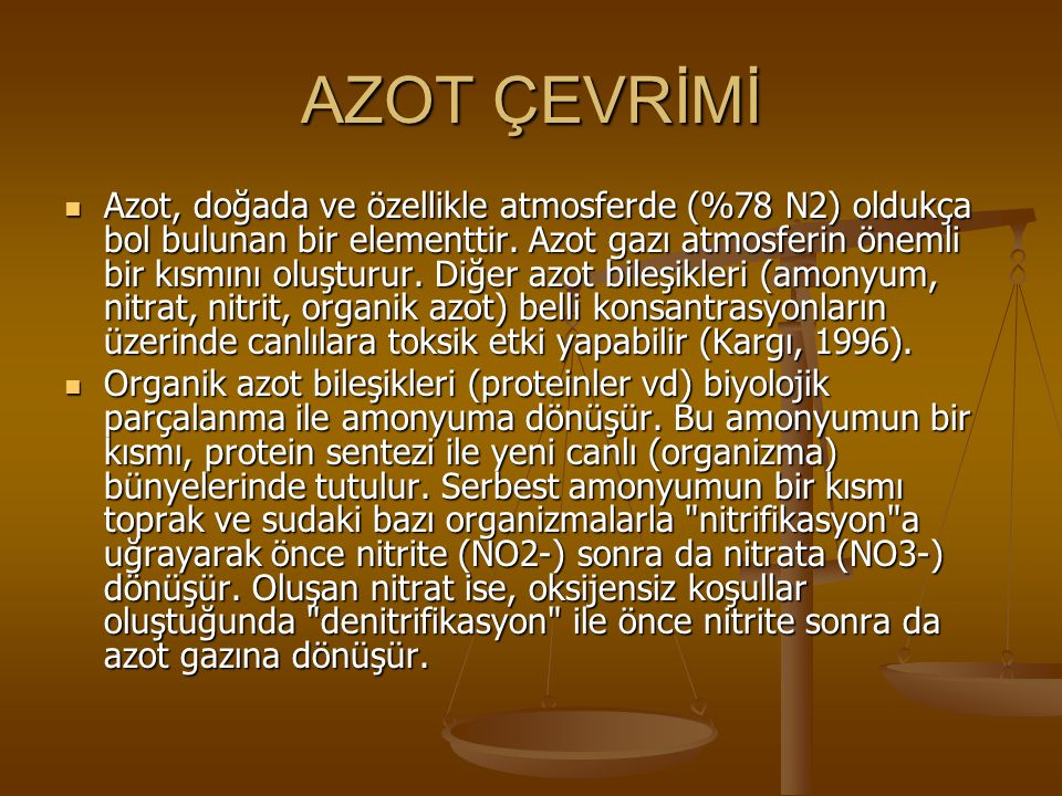 AZOT ÇEVRİMİ