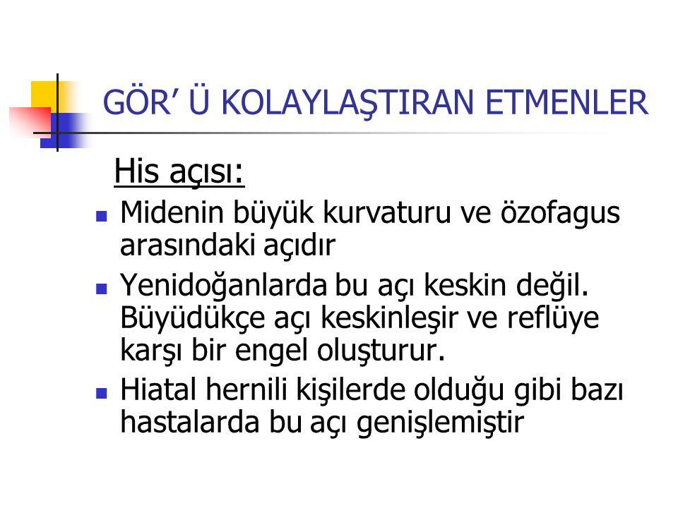 GÖR' Ü KOLAYLAŞTIRAN ETMENLER