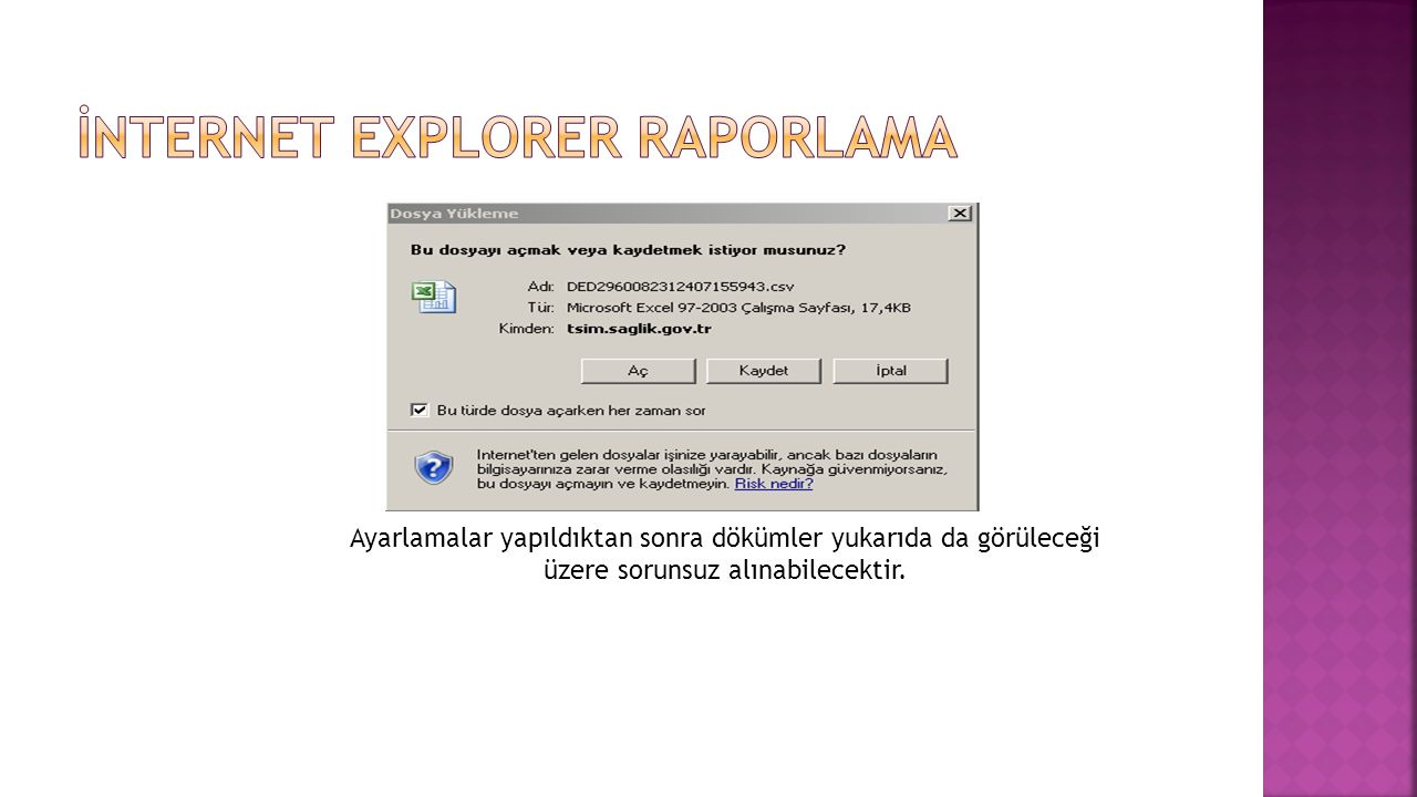 İNTERNET EXPLORER RAPORLAMA