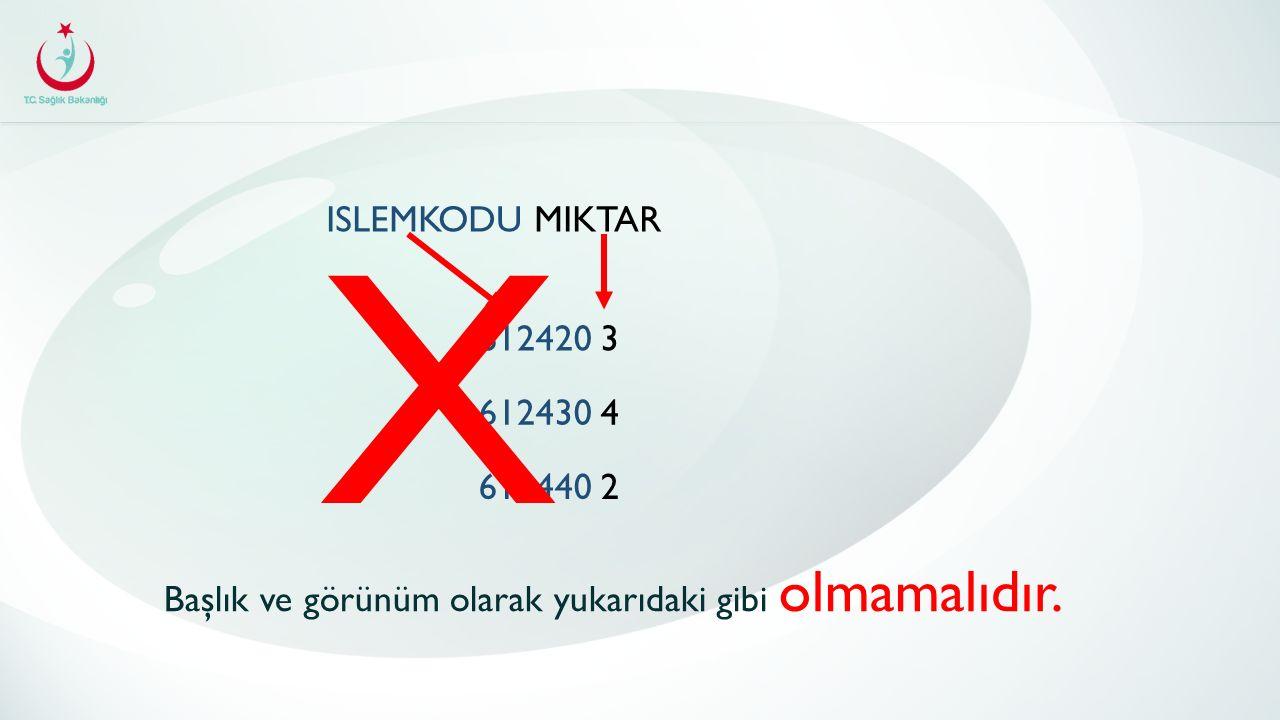 X ISLEMKODU MIKTAR 612420 3 612430 4 612440 2 Başlık ve görünüm olarak yukarıdaki gibi olmamalıdır.
