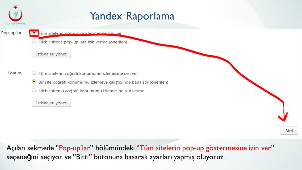 Yandex Raporlama