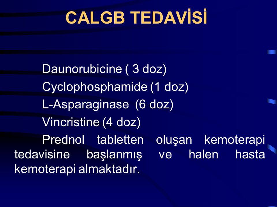 CALGB TEDAVİSİ Daunorubicine ( 3 doz) Cyclophosphamide (1 doz)