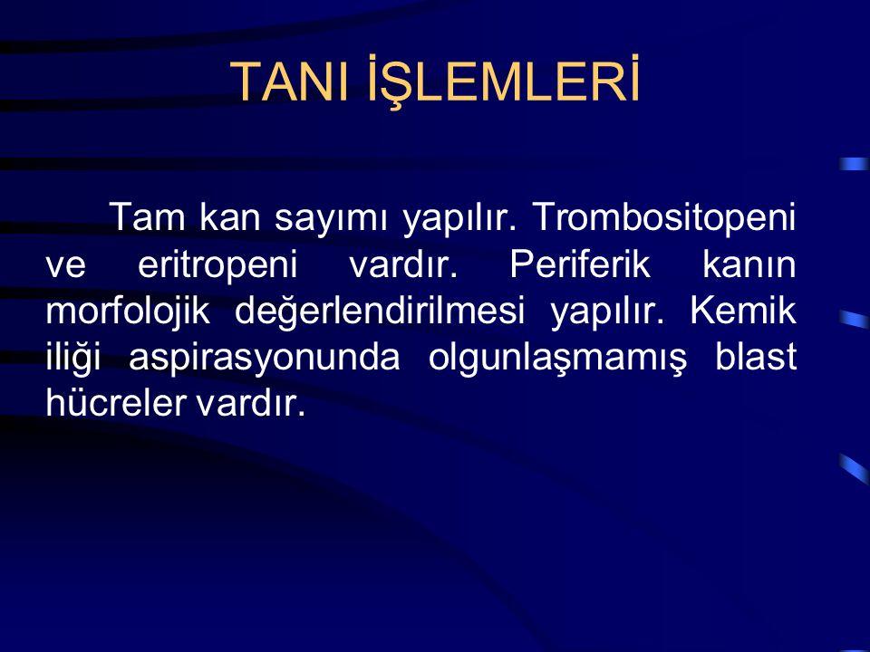 TANI İŞLEMLERİ