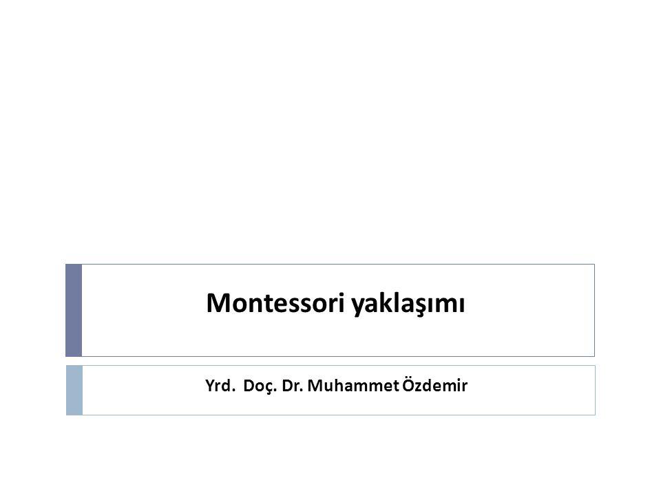 Yrd. Doç. Dr. Muhammet Özdemir