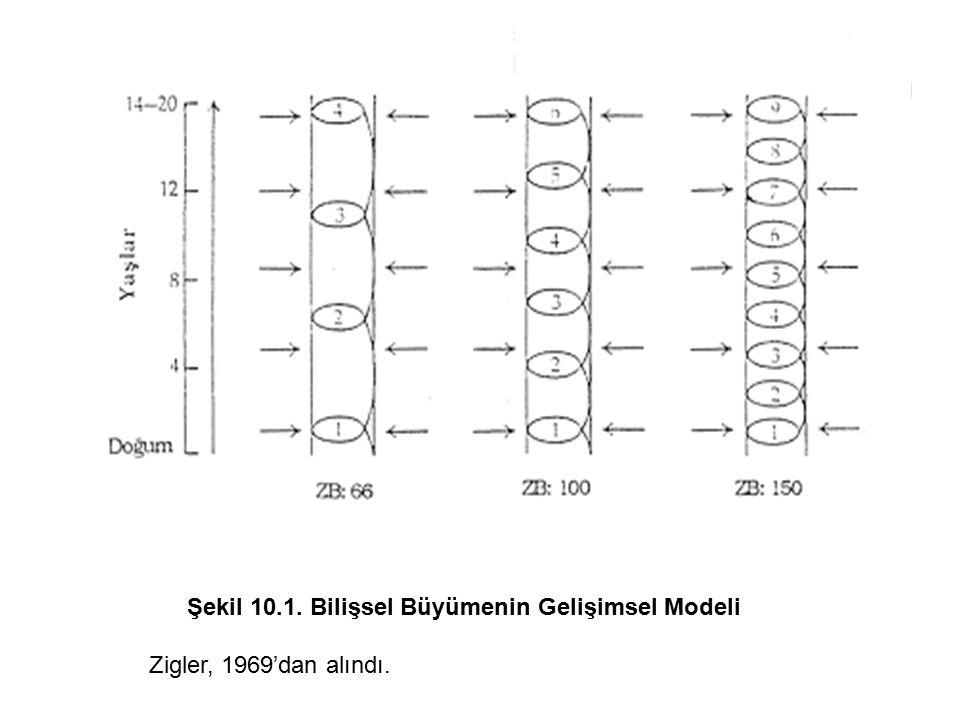 Şekil 10.1. Bilişsel Büyümenin Gelişimsel Modeli